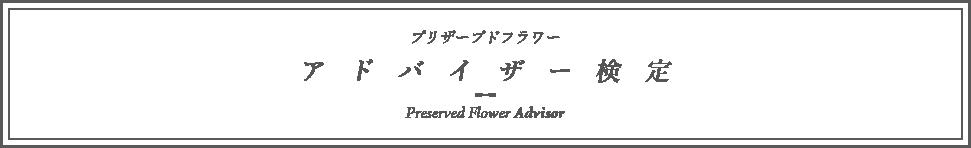 advisor_title